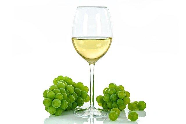 hrozny u vína