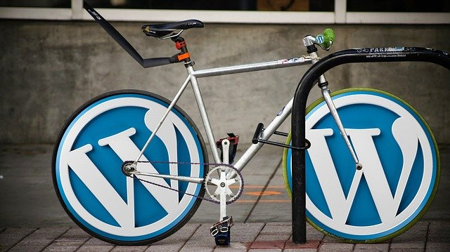 wordpress logo na kole